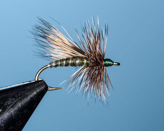 Adams Caddis - Dry Fly Innovations