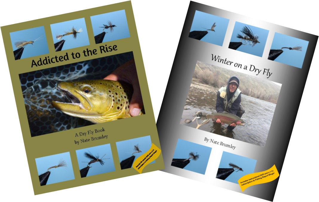 Dry Fly Innovation's Books and DVDs
